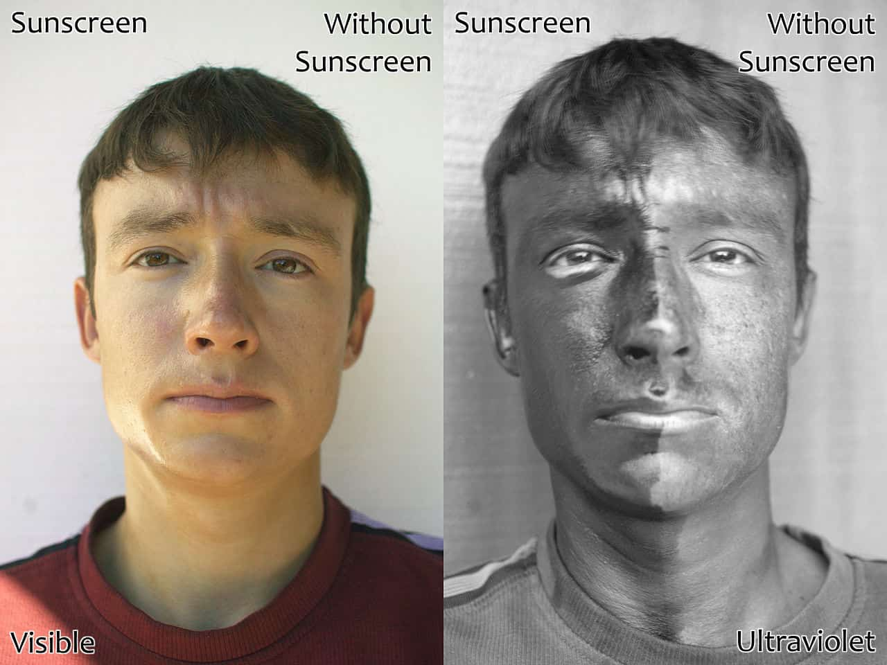 1280px-UV_and_Vis_Sunscreen