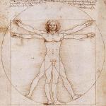 davinci human body